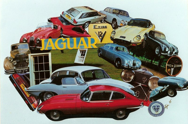 Jaguar Collage