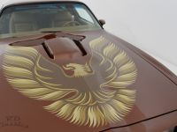 1979 Pontiac, Trans Am 2D Coupe