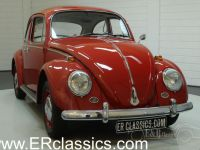 1966 VW/Volkswagen, Beetle 1966 Ruby Red